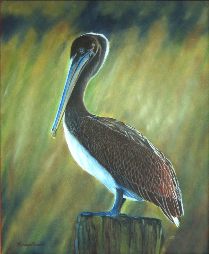 Standing watch unframed by Miriam Rowell 21.5 x 24.5 $375