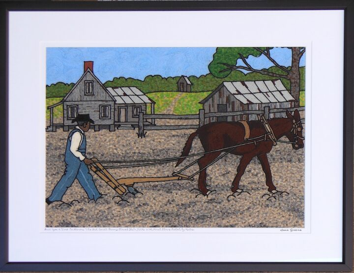 Once upon a time Southeners used hand plows pulled by mules