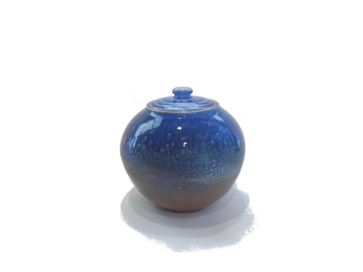 Jennifer Stott Blue Jar Wide
