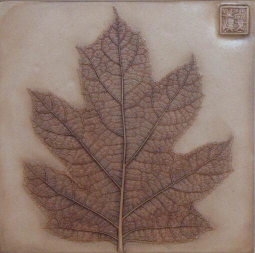 Dianne Cutler Oak Leaf Hydrangea 7x7