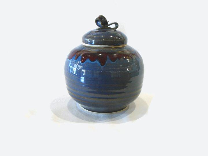 Lidded Dragonfly Jar by B Vaillancourt