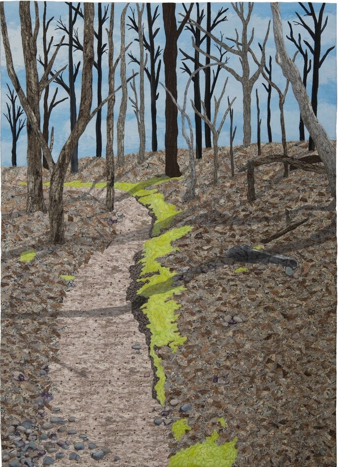 A Walk in the Woods by JoAnn Camp